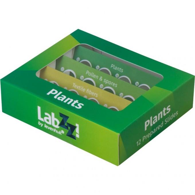 Набор микропрепаратов LEVENHUK LabZZ P12, растения 72869